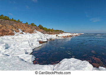 Shore during spring - Sea shore during spring - Baltic Sea -...