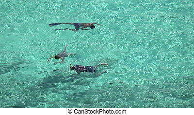 Snorkeling - Three people snorkeling in the water near...