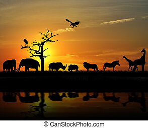 African Animals - African Wild Animals Silhouettes Against A...