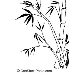 Bamboo isolated over white Vector illustration