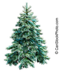 Blue christmas tree with clipping path - Blue spruce with...