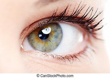 Woman eye. - Beautiful young woman eye closeup. Vision...
