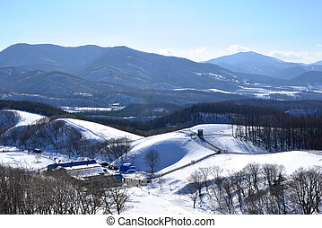Snowy mountain in South Korea - Pyeongchang city is the...