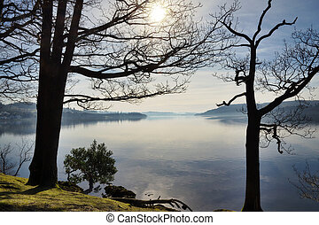Lake Windermere framed by two trees - A view of Windermere,...