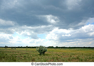Ukrainian steppe - The fall approaches. Heavy clouds hung...