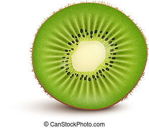 Fresh kiwi fruit Slice isolated on white background Vector...