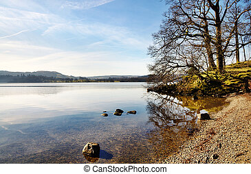 Trees on the shore of Lake Windermere - Tranquil view of...
