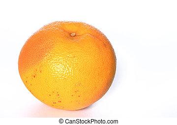 toronja, (Citrus, aurantium)