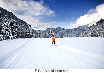 cross-country skiing - Cross-country skiing trail near...