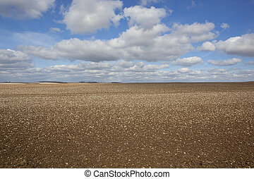 chalky soil on the Yorkshire Wolds - chalky plowed soil in a...