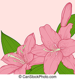 background decorated with beautiful pink lilies in the...