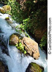 Banias Waterfall . Hermon Stream Nature Reserve, Israel.
