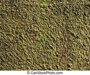 Grunge Cement Texture Bacground - Grunge cement texture...