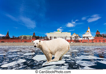 Spring in Moscow The polar bear on an ice floe floats by the...