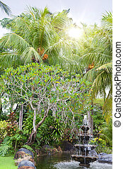 fountain under palm trees in a tropical garden
