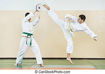 Two man at taekwondo exercises - Two young adult people in...