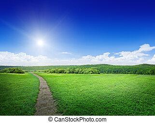 rural, pradera, camino