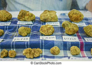 White truffles for sale - White truffles tuber magnatum for...
