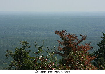 Shenandoah - Looking out over the Shenandoah Valley, from...