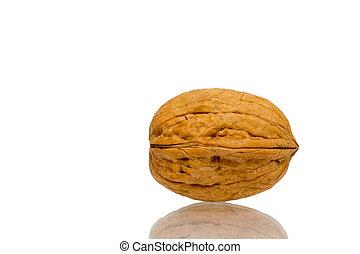 Walnut isolated on white background close up