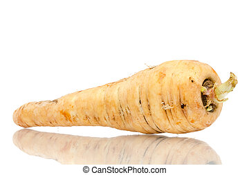 Parsnip isolated on white background close up