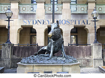 Hog Statue outside Sydney Hospital, Sydney, Australia