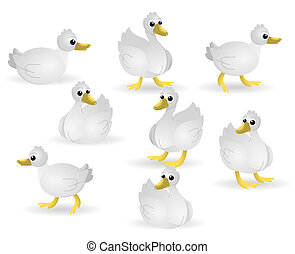 Ducks - Several Ducks with Clipping Path