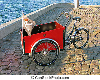 Tricycle - Colorful Tricycle with black pirate flag