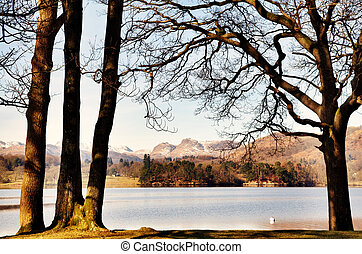 Trees framing Windermere and the Langdale Pikes - Tranquil...