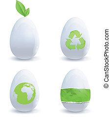 Collection of eco eggs. Vector deisgn.