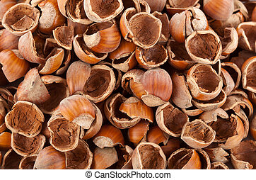 Nut shells on white background