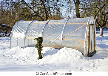 handmade polythene greenhouse for vegetable in winter on...
