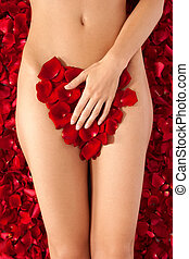 Beautiful body of woman against petals of red roses. Heart shape made out of rose petals