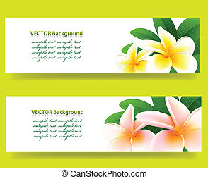 banner with orchids, floral vector background