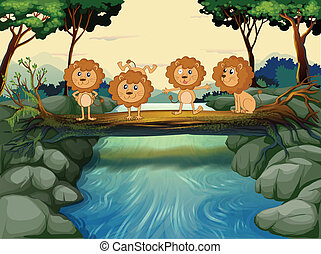 Four young lions at the river - Illustration of the four...