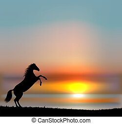 Prancing Horse on sunset sky. EPS10 vector
