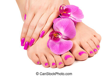 pink manicure and pedicure with a orchid flower. isolated -...