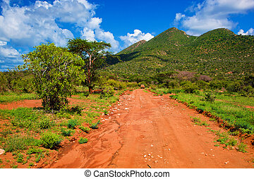 Red ground road, bush with savanna Tsavo West, Kenya, Africa...