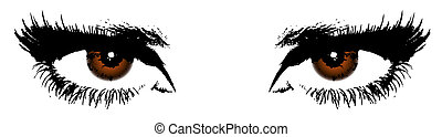 women's brown eyes on a white background