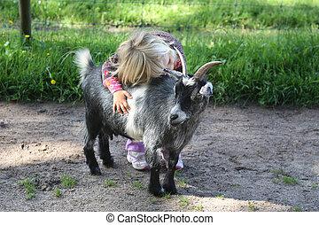 比利, 女孩,  goat