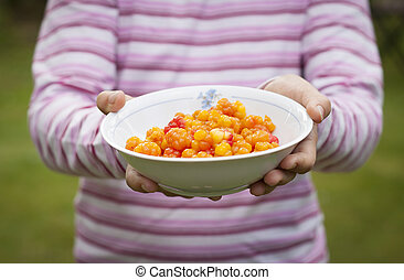 Cloudberry - A child holding out a plate full of ripe...