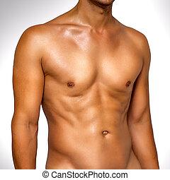 Nude wet male muscular torso