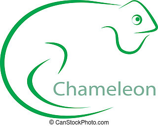 Vector image of an chameleon on a white background