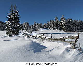 Snowy Winter Scene with fence and pine trees high in the...
