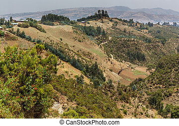 Hilly landscapes of Ethiopia - The hilly landscapes of...