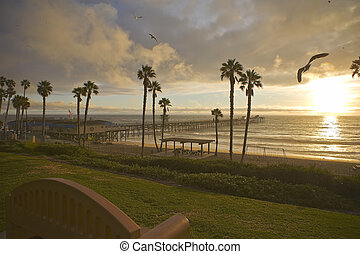 San Clemente Pier after a storm with Sea Gulls - San...