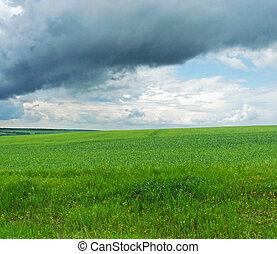 Green grass, blue sky, landscape