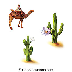 Desert, Bedouin on camel, saguaro cactus with flowers,...