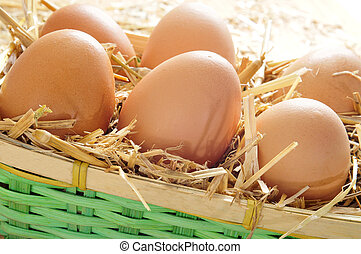 brown eggs in a basket