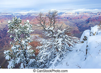 Grand Canyon - The Grand canyon national park in snow